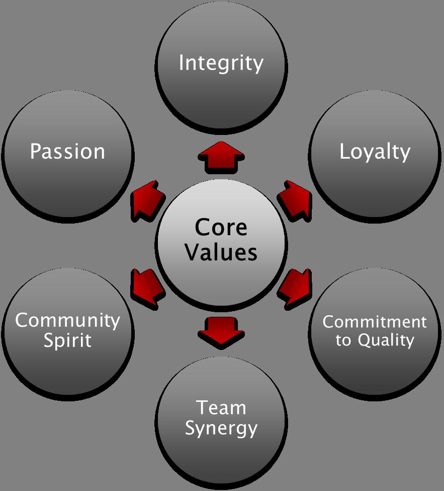nursing core values essay